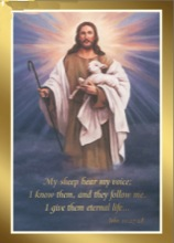 Jesus Shepherd Card