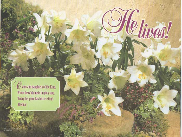 He Lives! Easter Lily Bulletin - 25% OFF!