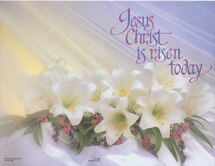 Jesus Is Risen Easter Lily Bulletin - 25% OFF!